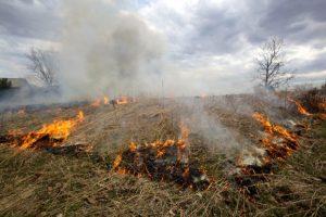 Einsatz 07-2019: Mähdrescherbrand zwischen Bösel und Rebenstorf
