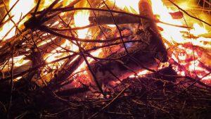Einsatz 02-2020: Buschbrand zwischen Woltersdorf und Dangenstorf